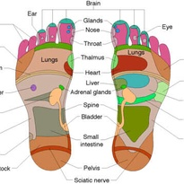 <p>Estelle Allen</p><p>3 for 2 reflexology sessions for new clients.  Treatments are £30 with £25 concessions.</p>